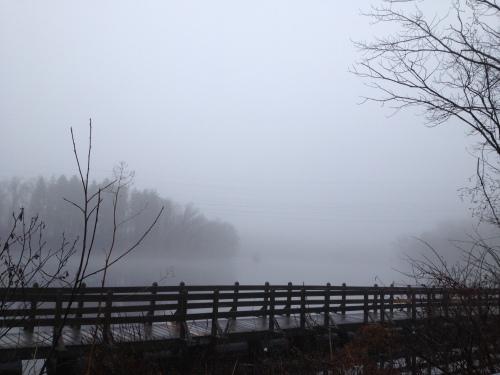 Fog - 1